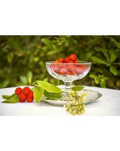 Arbouses au sirop en conserve - Marque Coq - Fruits exotiques - 567G - 24 boîtes