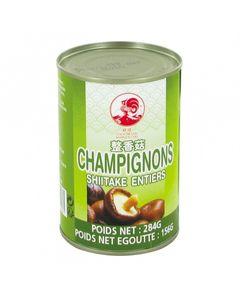 Champignons Shiitake entiers parfumés en conserve - Marque COQ - 284g - 12 boîtes