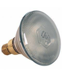 Ampoule Seule Blanche 175 W - Pujadas -          Cristal